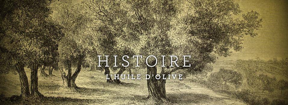 Photo-gravure d'olivier