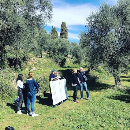 photos oliviers
